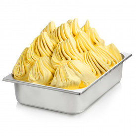 Gelq.it | ZABAGLIONE PASTE Rubicone | Italian gelato ingredients | Buy online | Ice cream traditional pastes
