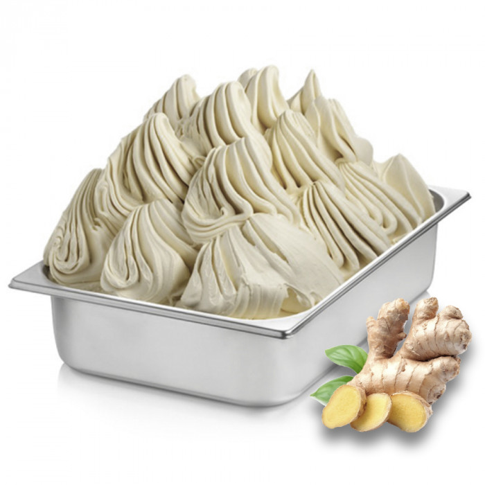 Gelq.it | GINGER PASTE Rubicone | Italian gelato ingredients | Buy online | Ice cream traditional pastes