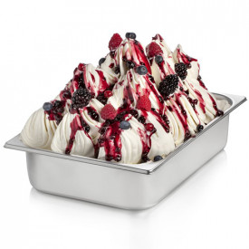 Gelq.it | TOPPING BERRIES Rubicone | Italian gelato ingredients | Buy online | Topping sauces