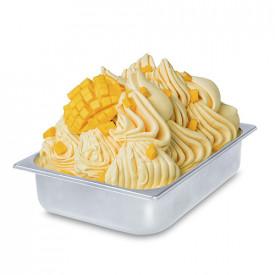 Gelq.it | MANGO ALPHONSO PASTE Rubicone | Italian gelato ingredients | Buy online | Fruit ice cream pastes