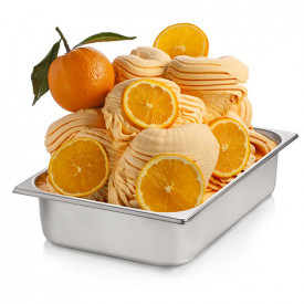 Gelq.it | ORANGE READY BASE Rubicone | Italian gelato ingredients | Buy online | Complete fruit ice cream bases