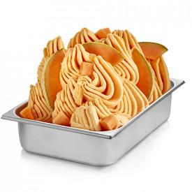 Gelq.it | BASE READY MELON Rubicone | Italian gelato ingredients | Buy online | Complete fruit ice cream bases