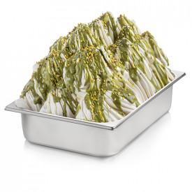Italian gelato ingredients | Ice cream products | Buy online | PISTACHIO CREAM Rubicone on Crunchy cream