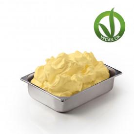 Prodotti per gelateria   Acquista online su Gelq.it   BASE SOIA ALL'A.C.E. CON FRUTTOSIO di Leagel. Basi complete gelato frutta.