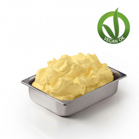 Italian gelato ingredients | Ice cream products | Buy online | SOY BASE ACE WITH FRUCTOSE Leagel on Complete fruit bases