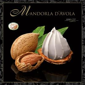 Gelq.it | AVOLA ALMOND PASTE - GOLD LINE Leagel | Italian gelato ingredients | Buy online | Nuts ice cream pastes