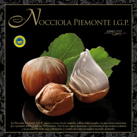 Gelq.it | PIEDMONT HAZELNUT PASTE IGP - GOLD LINE Leagel | Italian gelato ingredients | Buy online | Nuts ice cream pastes