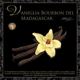 Prodotti per gelateria | Acquista online su Gelq.it | PASTA VANIGLIA BOURBON DEL MADAGASCAR - LINEA GOLD di Leagel. Paste gelato