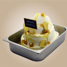 Prodotti per gelateria | Acquista online su Gelq.it | VARIEGATO ZENZERO di Leagel. Variegati Frutta per gelato.