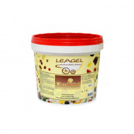 Gelq.it | CIOCCONOCCIOLA CREAM (CHOCOLATE HAZELNUT) Leagel | Italian gelato ingredients | Buy online | Hazelnut cream