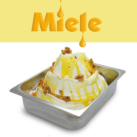 Italian gelato ingredients | Ice cream products | Buy online | TOPPING HONEY Leagel on Topping sauces