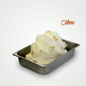 Prodotti per gelateria | Acquista online su Gelq.it | CHEESECAKE 50 GELATO MASTER SCHOOL (IN POLVERE) di Leagel. Paste gelato cl