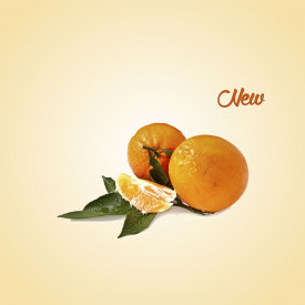 Italian gelato ingredients | Ice cream products | Buy online | LATE CIACULLI MANDARIN PASTE COMP. A Leagel on Fruit flavors