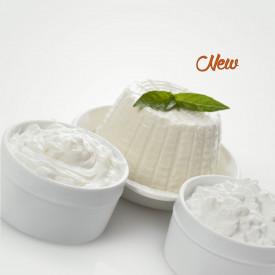 Prodotti per gelateria | Acquista online su Gelq.it | RICOTTA 50 GELATO MASTER SCHOOL (IN POLVERE) di Leagel. Paste gelato class