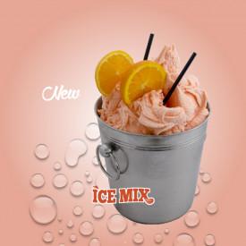 Prodotti per gelateria   Acquista online su Gelq.it   PASTA SPRITZ di Leagel. Paste frutta gelato.