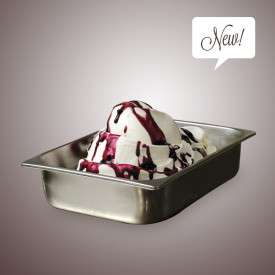 Italian gelato ingredients | Ice cream products | Buy online | PANNA COTTA PASTE Leagel on Traditional flavors