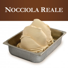 Gelq.it   ROYAL HAZELNUT PASTE Leagel   Italian gelato ingredients   Buy online   Nuts ice cream pastes