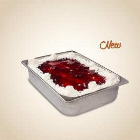 Gelq.it | PAVLOVA PASTE Leagel | Italian gelato ingredients | Buy online | Ice cream traditional pastes