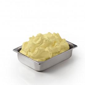 Gelq.it | ZABAJONE PASTE Leagel | Italian gelato ingredients | Buy online | Ice cream traditional pastes