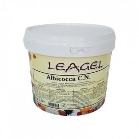 Gelq.it   APRICOT PASTE Leagel   Italian gelato ingredients   Buy online   Fruit ice cream pastes