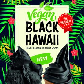 Gelq.it | BASE SOFT BLACK HAWAII VEGAN Rubicone | Italian gelato ingredients | Buy online | Soft serve ice cream bases