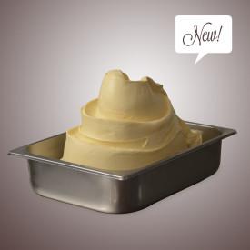 Prodotti per gelateria   Acquista online su Gelq.it   BASE FRUTTA 50 GELATO MASTER SCHOOL di Leagel. Basi gelato frutta a caldo.