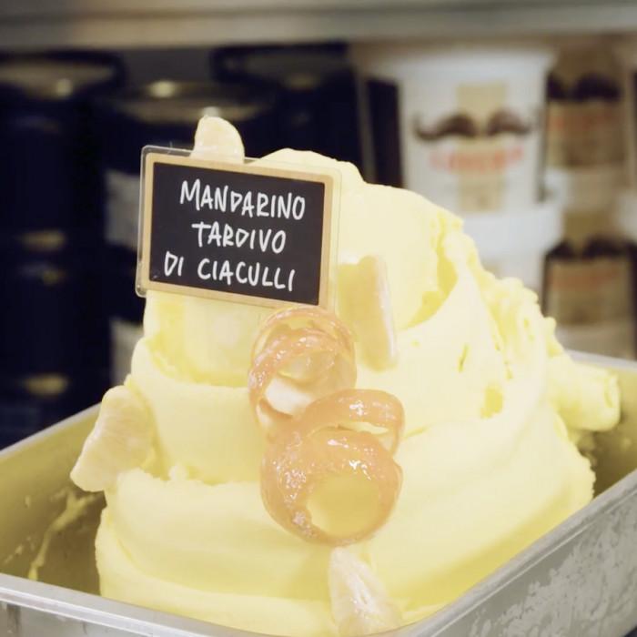 Italian gelato ingredients | Ice cream products | Buy online | LATE CIACULLI MANDARIN PASTE COMP. B Leagel on Fruit flavors