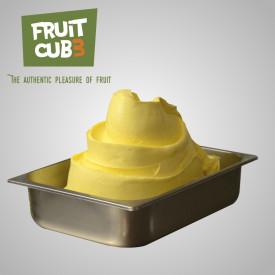 Gelq.it | FRUITCUB3 PASSION FRUIT (MARACUJA) Leagel | Italian gelato ingredients | Buy online | Fruit ice cream pastes