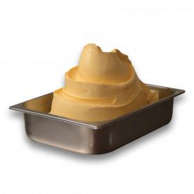 Prodotti per gelateria | Acquista online su Gelq.it | BASE EASY TROPICALE di Leagel. Basi complete gelato frutta.