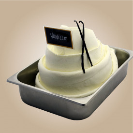 Prodotti per gelateria | Acquista online su Gelq.it | PASTA VANIGLIA 25 C CON BACCHE di Leagel. Paste gelato classiche.