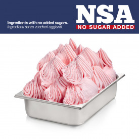 BASE FRUTTA NSA - LIGHT & LACTOSE FREE