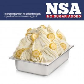 Prodotti per gelateria | Acquista online su Gelq.it | BASE PRONTO BANANA NSA - LIGHT & LACTOSE FREE di Rubicone. Basi complete g