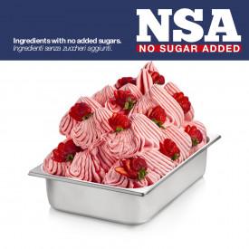 Gelq.it | BASE READY STRAWBERRY NSA - LIGHT & MILK FREE Rubicone | Italian gelato ingredients | Buy online | Complete fruit ice