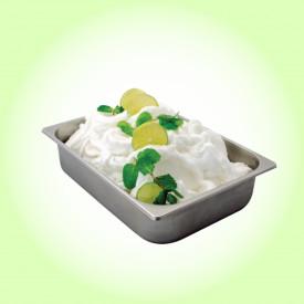 Gelq.it | HUGO COCKTAIL PASTE Leagel | Italian gelato ingredients | Buy online | Fruit ice cream pastes
