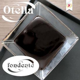 Acquista online su Gelq.it |Elenka CREMA OTELLA FONDENTE. Prodotti per la tua gelateria. Creme Elenka.