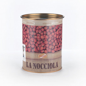 Acquista online su Gelq.it |Elenka PASTA NOCCIOLA PIEMONTE IGP. Prodotti per la tua gelateria. Paste gelato Elenka.