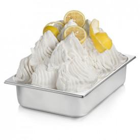 Prodotti per gelateria | Acquista online su Gelq.it | BASE VEGETAL LEMON 100 di Rubicone. Basi gelato frutta a freddo.