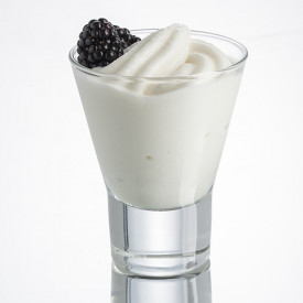 Gelq.it | BASE FROZEN CREAM-ICE YOGURT Rubicone | Italian gelato ingredients | Buy online | Frozen cream bases